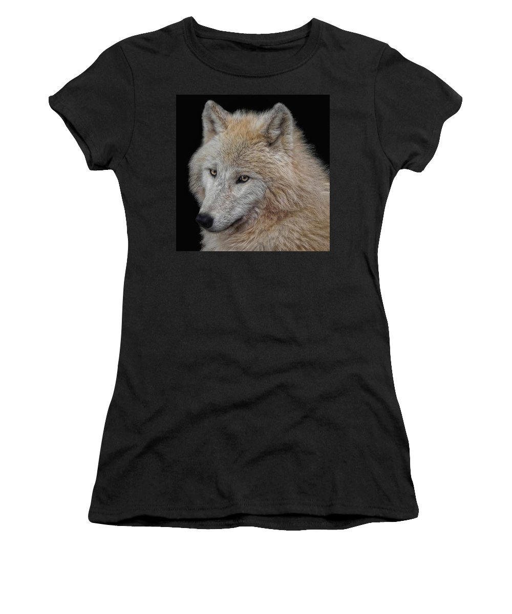 Animal Women's T-Shirt (Athletic Fit) featuring the photograph Wolf Bride by Joachim G Pinkawa