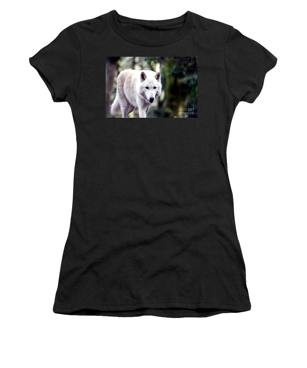 Wolf Women's T-Shirt (Athletic Fit) featuring the photograph Woodland White Wolf 2 by Nick Gustafson