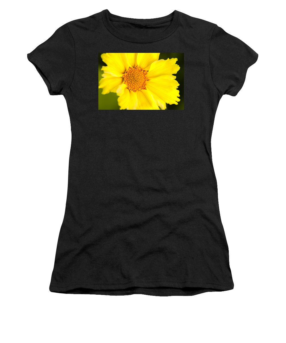 Yellow Women's T-Shirt (Athletic Fit) featuring the photograph Yellow Cheer by Lindley Johnson