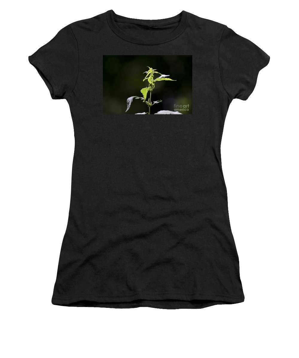 Burning Nettle Women's T-Shirt (Athletic Fit) featuring the photograph Burning Nettle by Mats Silvan