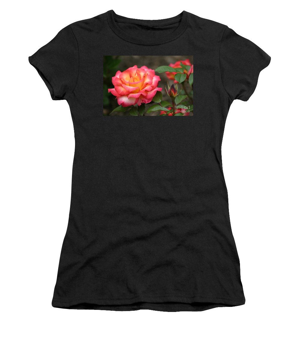 Roses Women's T-Shirt (Athletic Fit) featuring the photograph Color My World by Living Color Photography Lorraine Lynch