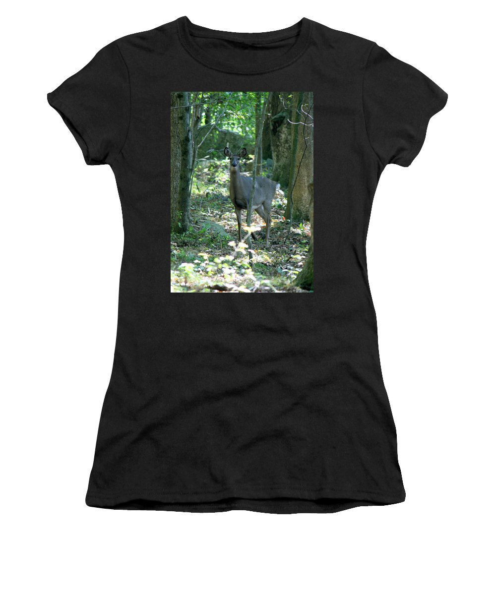 Deer Women's T-Shirt (Athletic Fit) featuring the photograph Inquisitive by Neal Eslinger