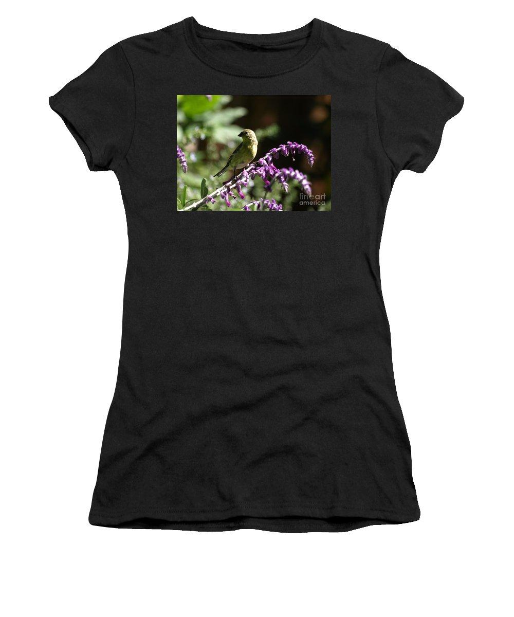 Lesser Goldfinch Women's T-Shirt featuring the photograph Lesser Goldfinch by Jacklyn Duryea Fraizer