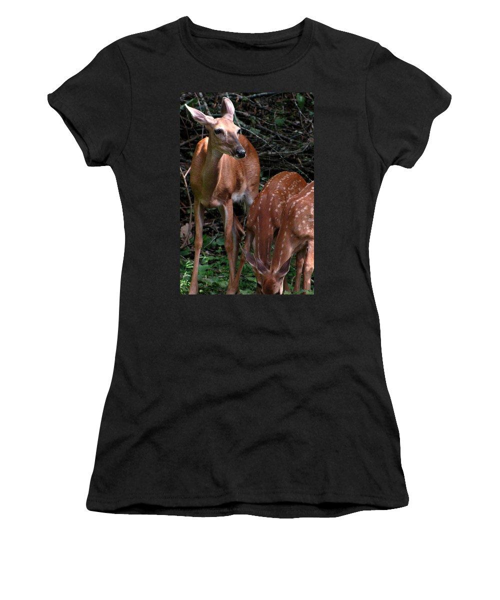 Deer Women's T-Shirt featuring the photograph Standing Guard by Jeff Heimlich