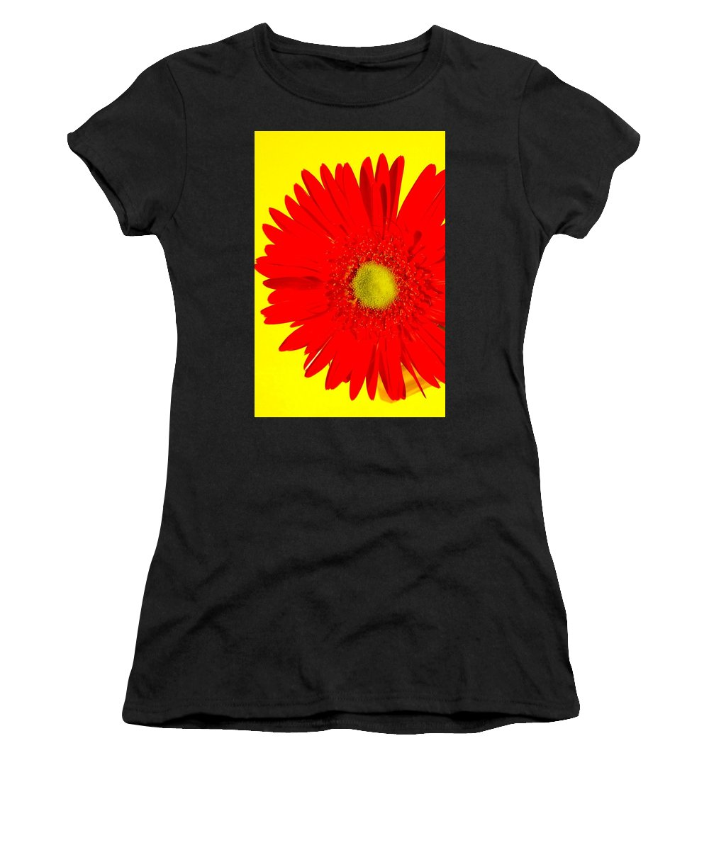 Gerbera Photographs Women's T-Shirt (Athletic Fit) featuring the photograph 2024a2-005 by Kimberlie Gerner