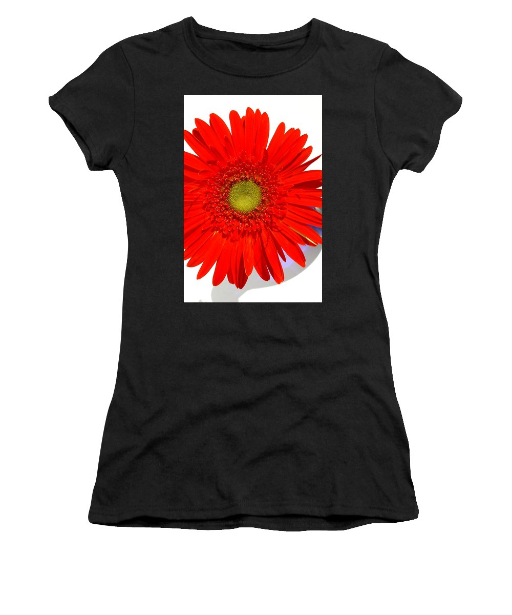 Gerbera Photographs Women's T-Shirt (Athletic Fit) featuring the photograph 2033a1-003 by Kimberlie Gerner