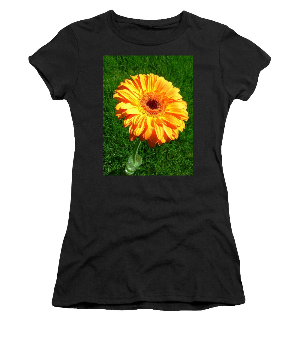 Gerbera Photographs Photographs Photographs Women's T-Shirt (Athletic Fit) featuring the photograph 3411 by Kimberlie Gerner