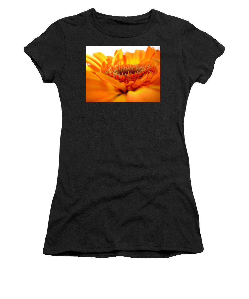 Gerbera Photographs Photographs Photographs Women's T-Shirt (Athletic Fit) featuring the photograph 3559 by Kimberlie Gerner