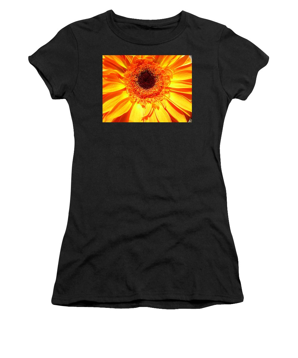 Gerbera Photographs Photographs Photographs Women's T-Shirt (Athletic Fit) featuring the photograph 3840c by Kimberlie Gerner