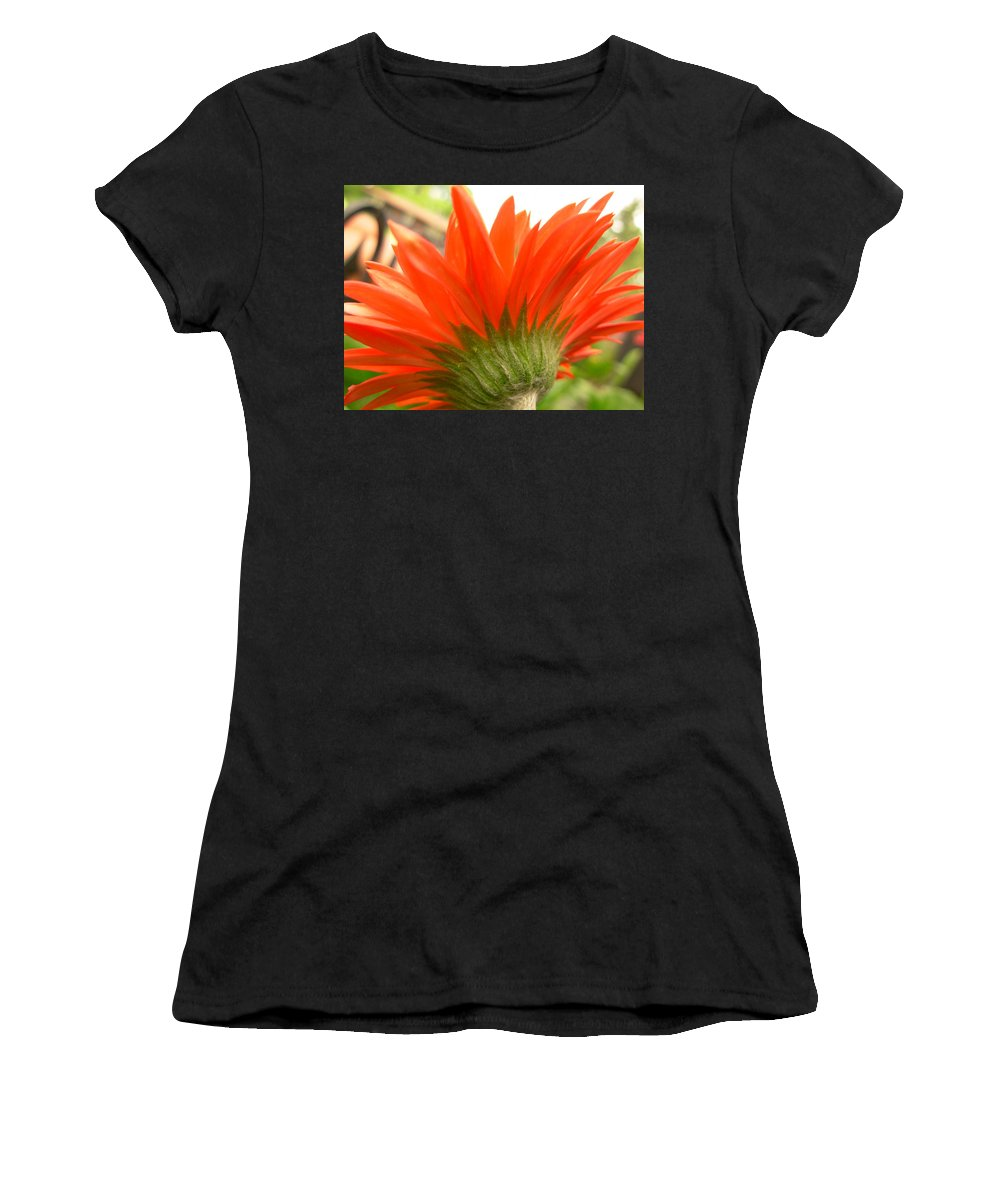 Gerbera Photographs Photographs Photographs Women's T-Shirt (Athletic Fit) featuring the photograph 6121 by Kimberlie Gerner