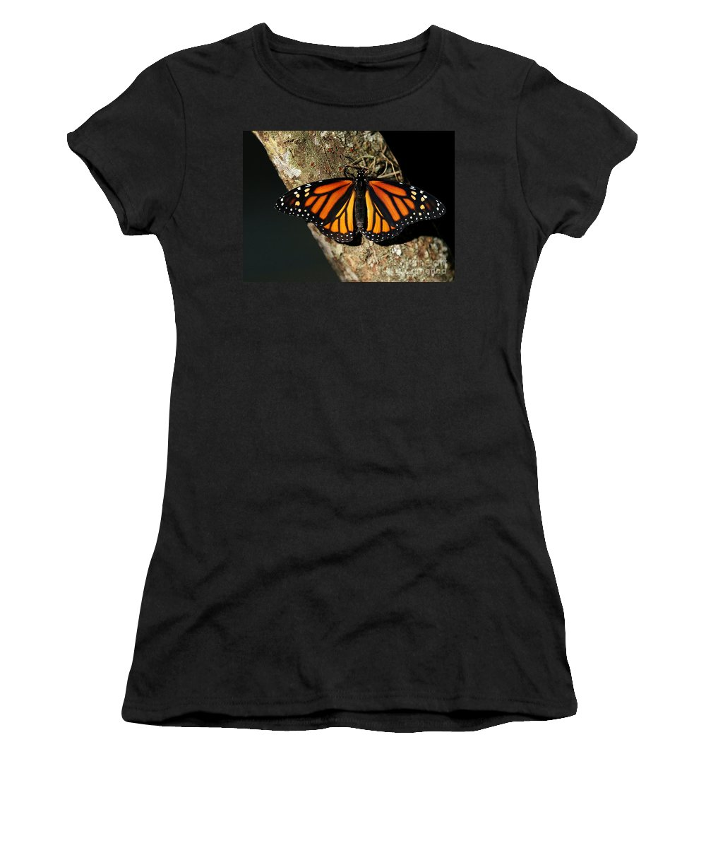 Butterfly Women's T-Shirt featuring the photograph Bright Orange Monarch Butterfly by Sabrina L Ryan