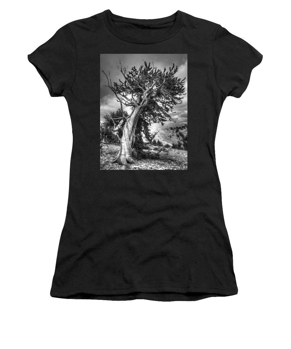 Pine Women's T-Shirt (Athletic Fit) featuring the photograph Bristlecone Patriarch by Joe Schofield
