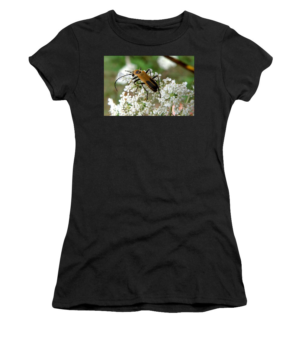 Nature Women's T-Shirt (Athletic Fit) featuring the photograph Bug And Flowers by Jiayin Ma