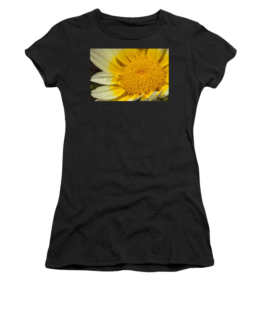 Flower Women's T-Shirt (Athletic Fit) featuring the photograph Close Up Of The Inside Of A Yellow And White Sun Flower by Ashish Agarwal