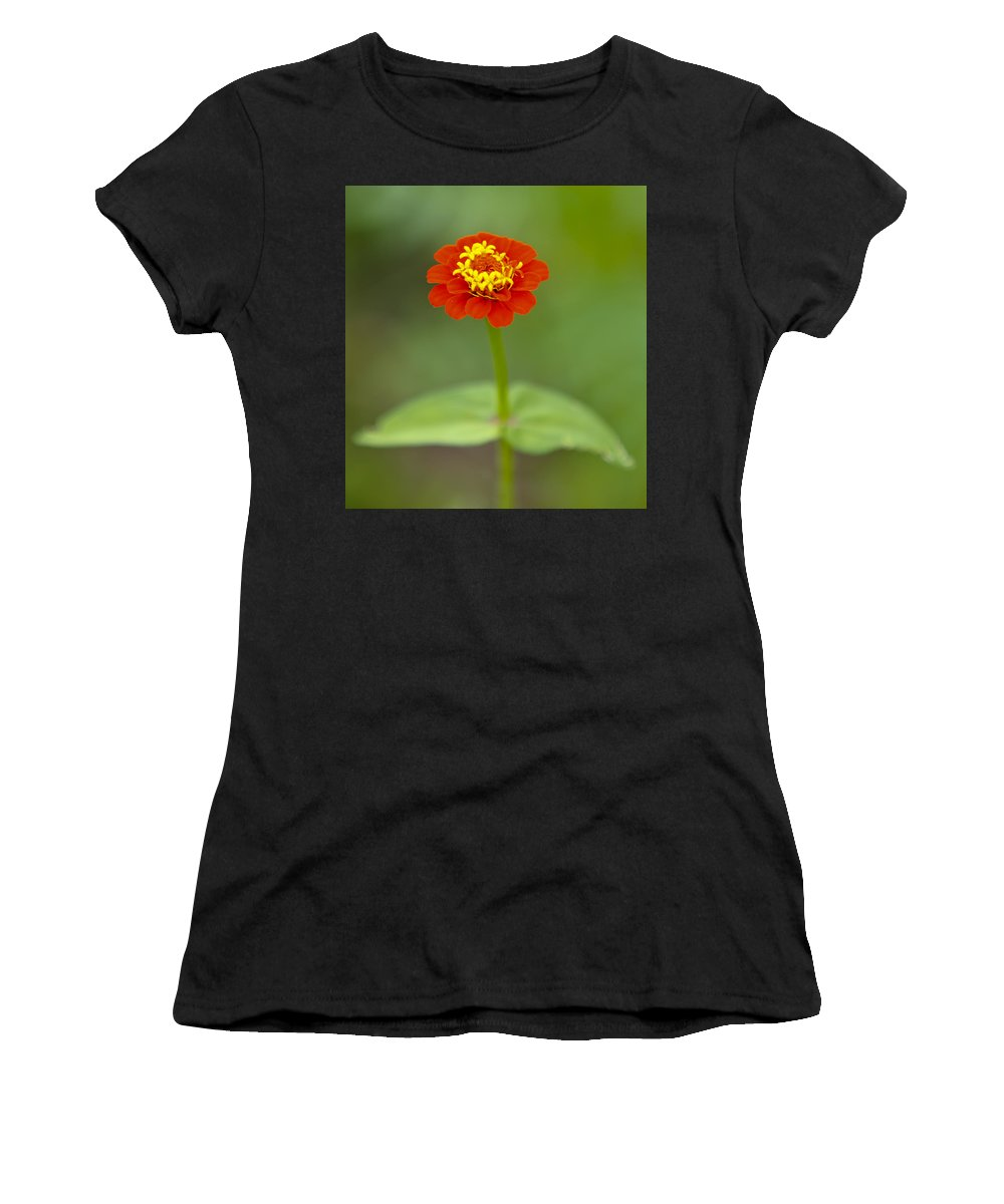 Beautiful Women's T-Shirt (Athletic Fit) featuring the photograph Close Up by Susie Hoffpauir