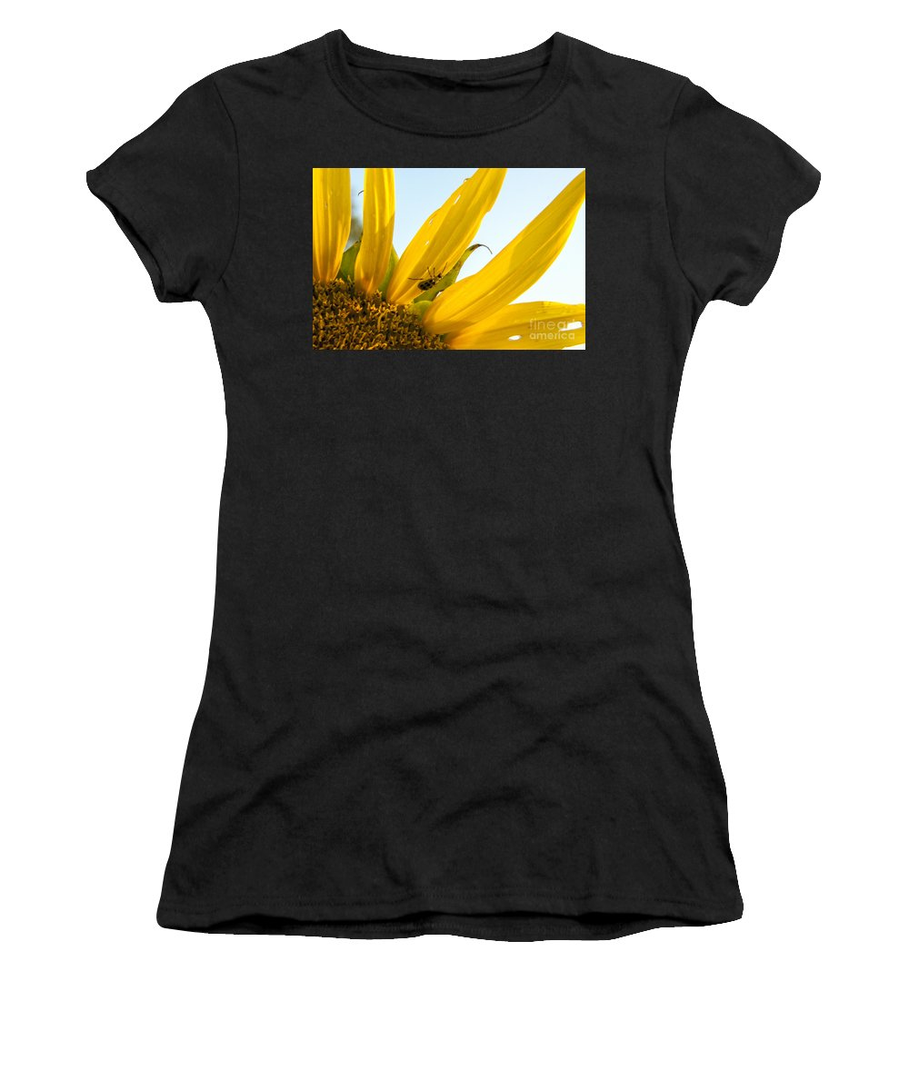 Sunflower Women's T-Shirt (Athletic Fit) featuring the photograph Crawling Along The Sunflower by Darleen Stry