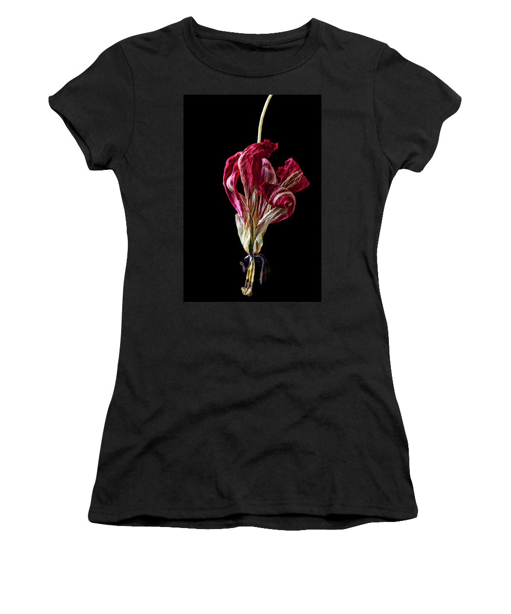 Dead Women's T-Shirt featuring the photograph Dead Dried Tulip by Garry Gay