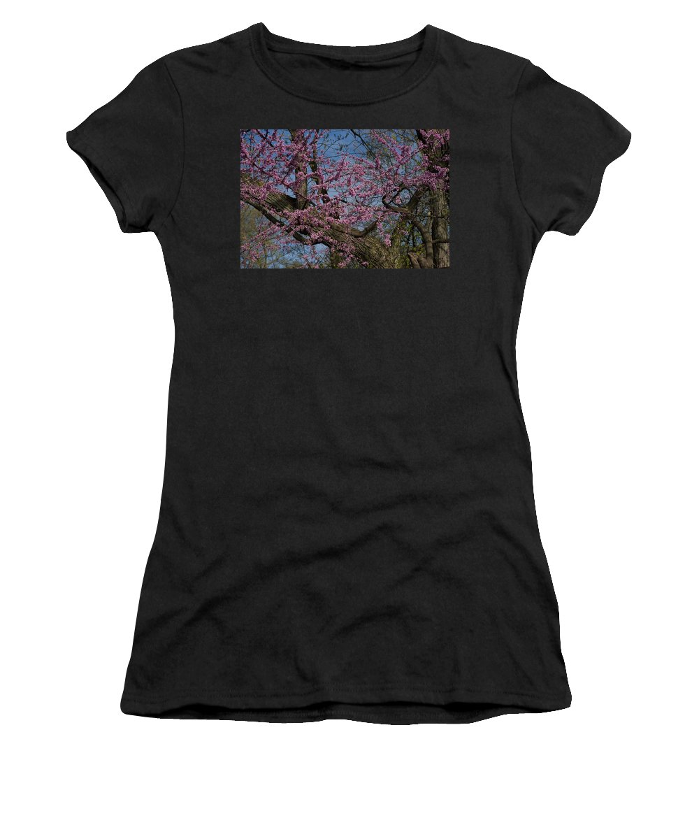 Lavender Blooms Women's T-Shirt (Athletic Fit) featuring the photograph Difficult by Joseph Yarbrough