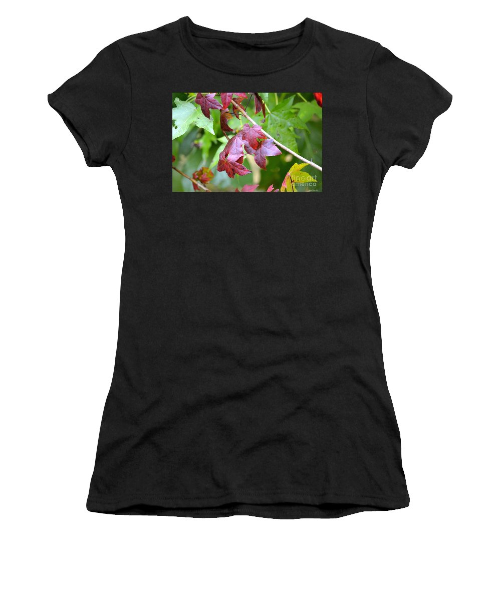 Fall Has Begun Women's T-Shirt (Athletic Fit) featuring the photograph Fall Has Begun by Maria Urso