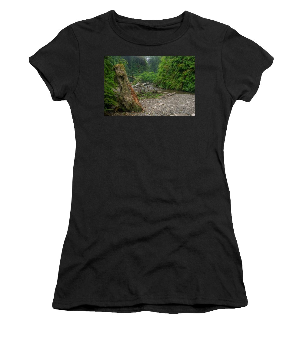 Fern Canyon Women's T-Shirt (Athletic Fit) featuring the photograph Fern Canyon Trunk by Greg Nyquist