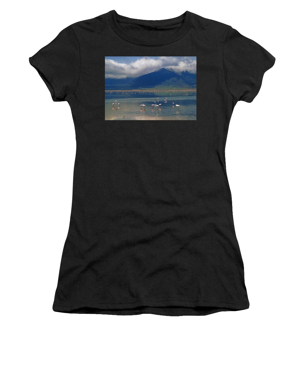 Volcano Women's T-Shirt (Athletic Fit) featuring the photograph Flamingoes In Crater Lake At Ngorongoro by Axiom Photographic