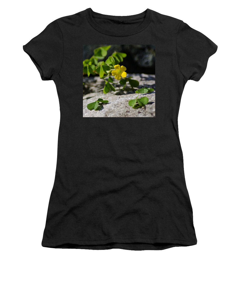 Flower Women's T-Shirt (Athletic Fit) featuring the photograph Flower And Dancing Clover by LeeAnn McLaneGoetz McLaneGoetzStudioLLCcom
