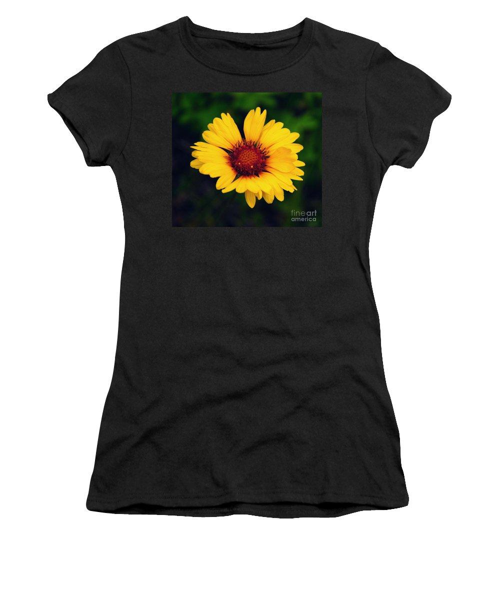 Gaillardia Women's T-Shirt featuring the photograph Gaillardia by Vivian Christopher
