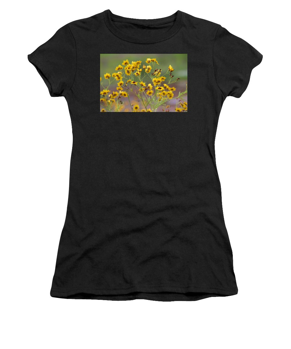 Coreopsis Basalis Women's T-Shirt (Athletic Fit) featuring the photograph Golden Coreopsis Tickseed Wildflowers by Kathy Clark