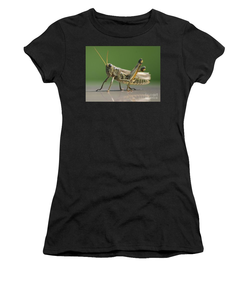 Grasshopper Women's T-Shirt (Athletic Fit) featuring the photograph Hello Whatcha Doing by Living Color Photography Lorraine Lynch