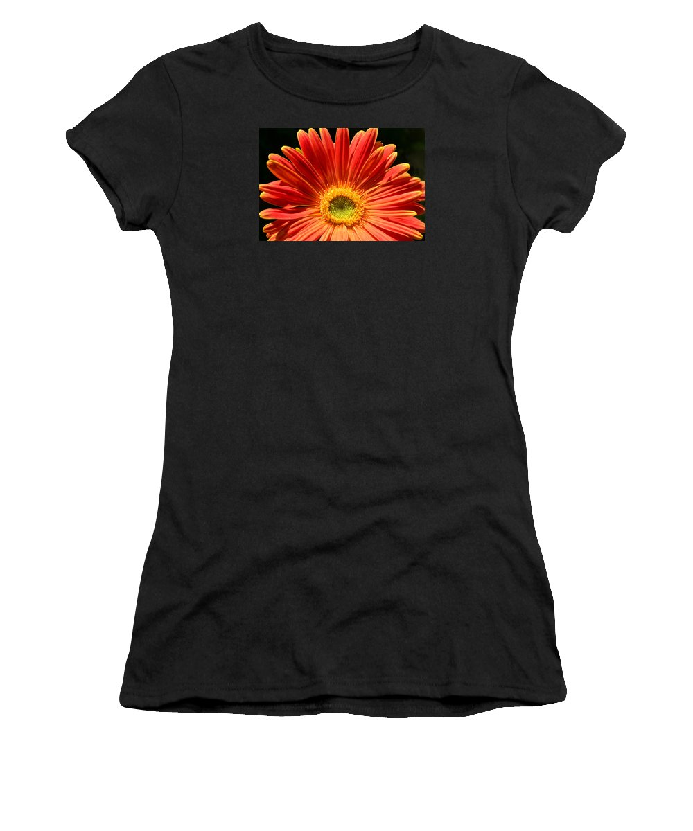 Gerbera Daisy Women's T-Shirt (Athletic Fit) featuring the photograph Here Comes The Sun by Sandi OReilly