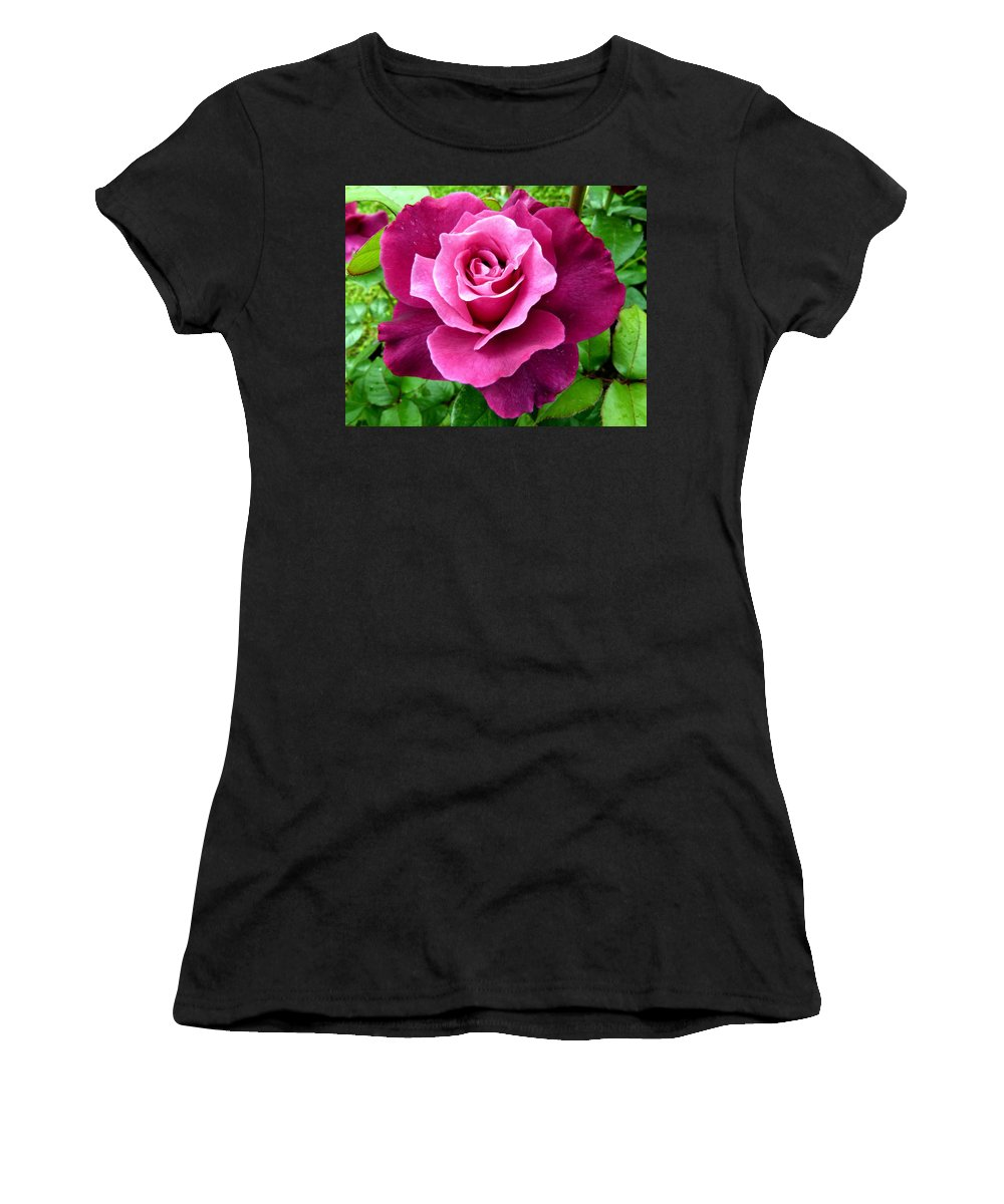 Intrigue Rose Women's T-Shirt (Athletic Fit) featuring the photograph Intrigue Rose by Will Borden