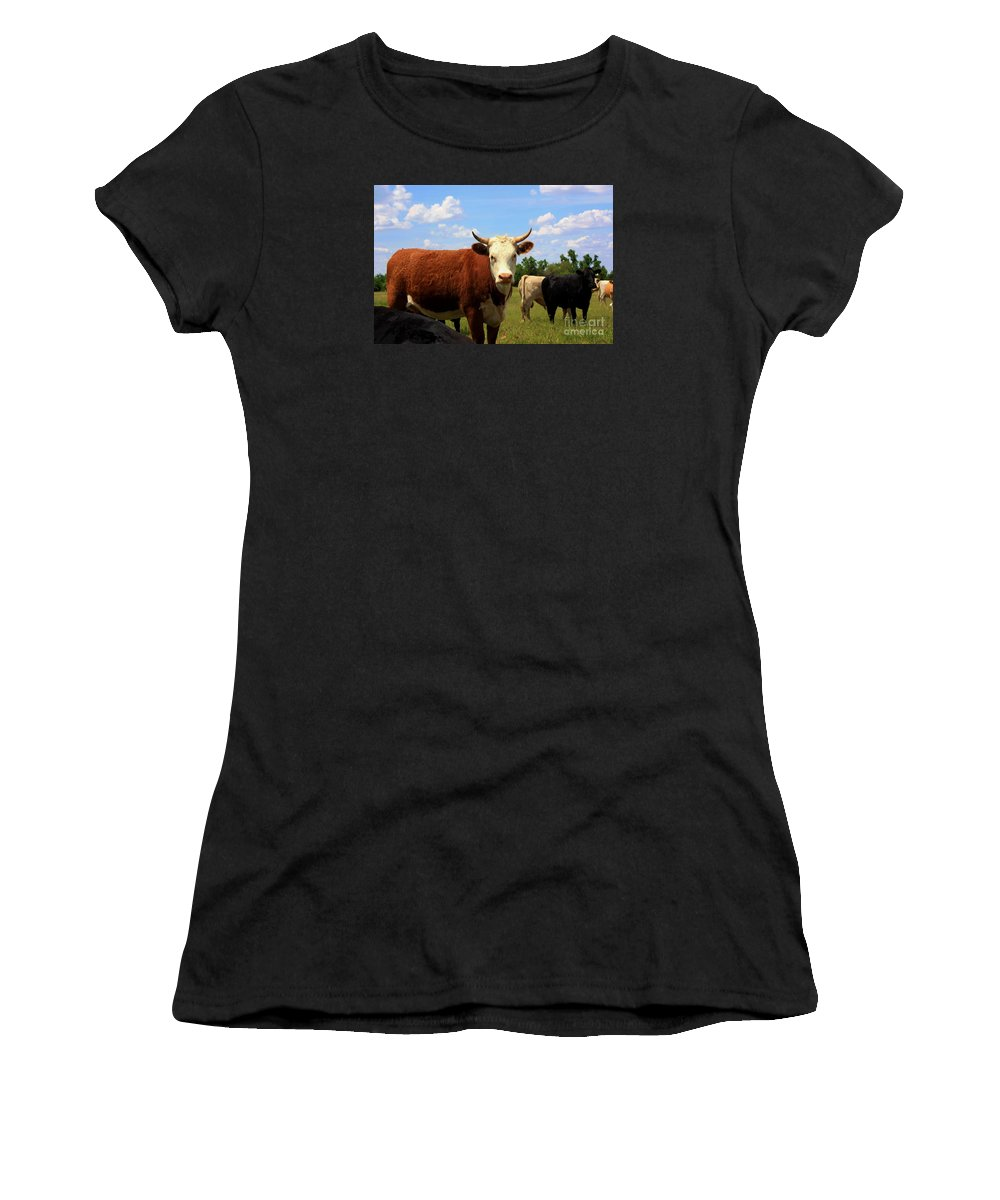 Cow Women's T-Shirt (Athletic Fit) featuring the photograph Kansas Country Cow's With Blue Sky And Grass by Robert D Brozek