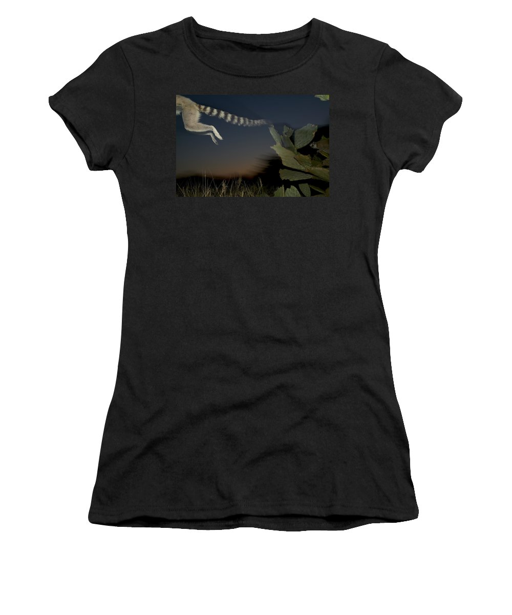 Mp Women's T-Shirt featuring the photograph Leaping Ring-tailed Lemur by Cyril Ruoso