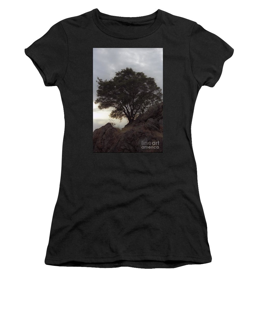Knights Ferry Women's T-Shirt featuring the photograph Lone Oak 2 by Jim And Emily Bush