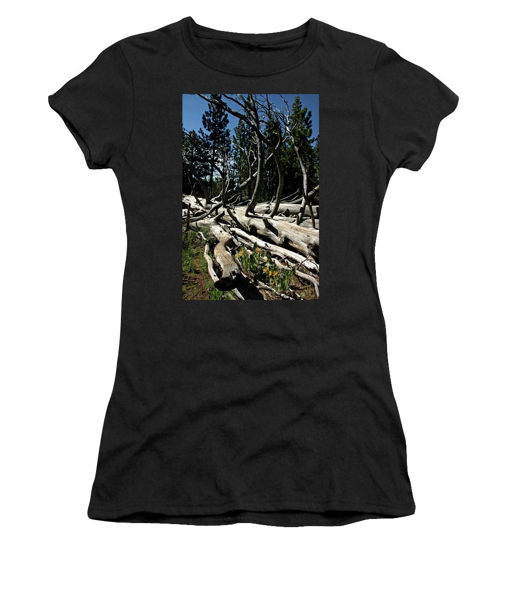 Usa Women's T-Shirt (Athletic Fit) featuring the photograph Mules Ear Timber by LeeAnn McLaneGoetz McLaneGoetzStudioLLCcom