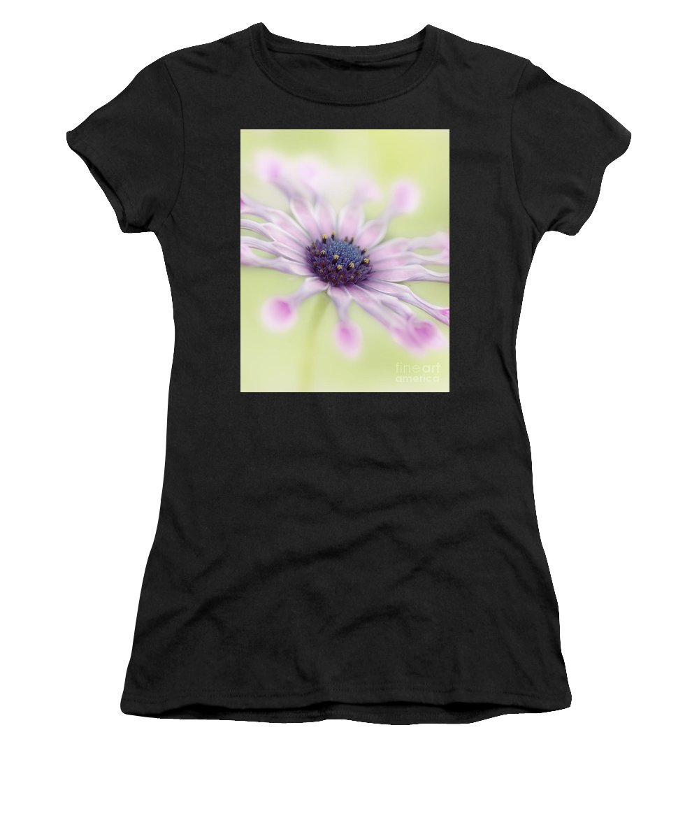 Osteospermum Women's T-Shirt (Athletic Fit) featuring the photograph Osteospermum Whirligig by Martin Williams