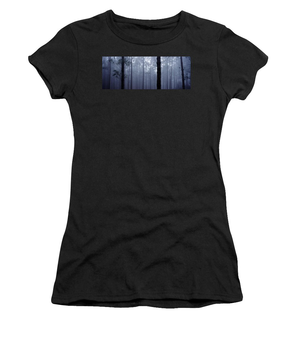 Trunks Women's T-Shirt (Athletic Fit) featuring the photograph Pine Trees In Cloud In The Forest Corona by Axiom Photographic