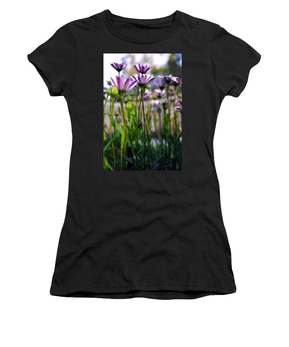 Pink Flowers Women's T-Shirt featuring the photograph Pink Blossoming Flowers by Sumit Mehndiratta