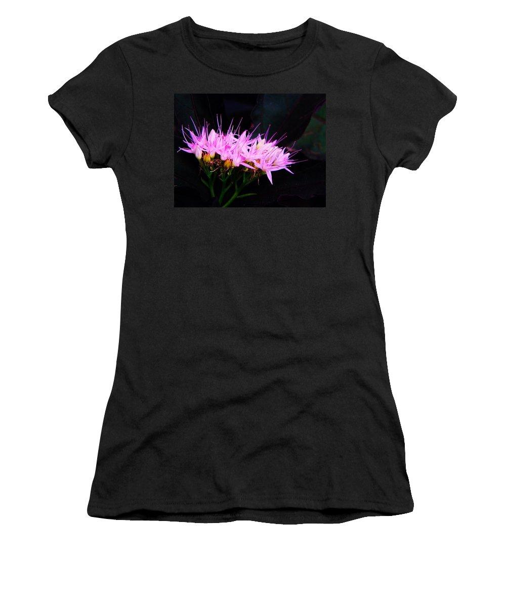 Sedum Women's T-Shirt featuring the photograph Purple Sedum by Chris Berry