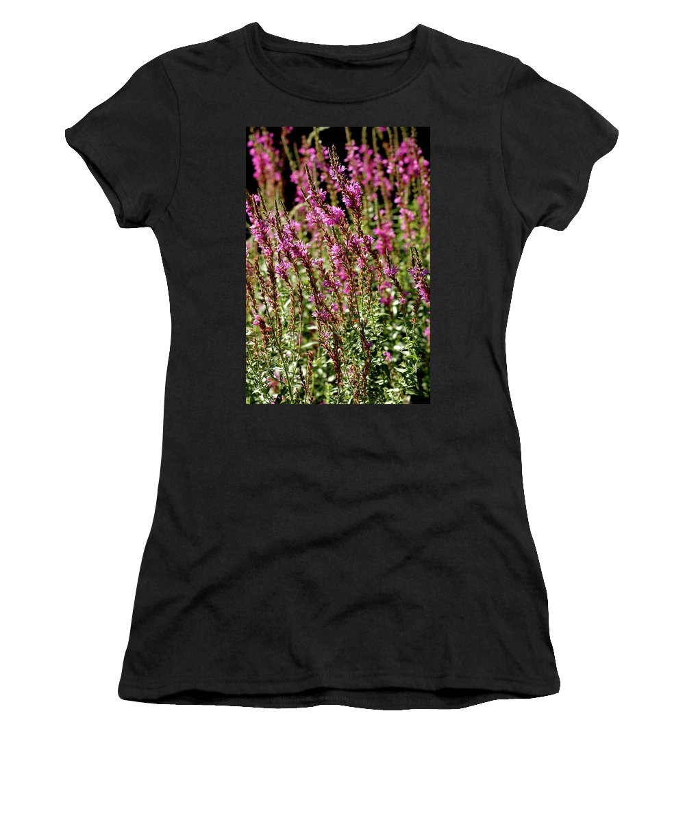 Usa Women's T-Shirt (Athletic Fit) featuring the photograph Purple Wild Flowers by LeeAnn McLaneGoetz McLaneGoetzStudioLLCcom