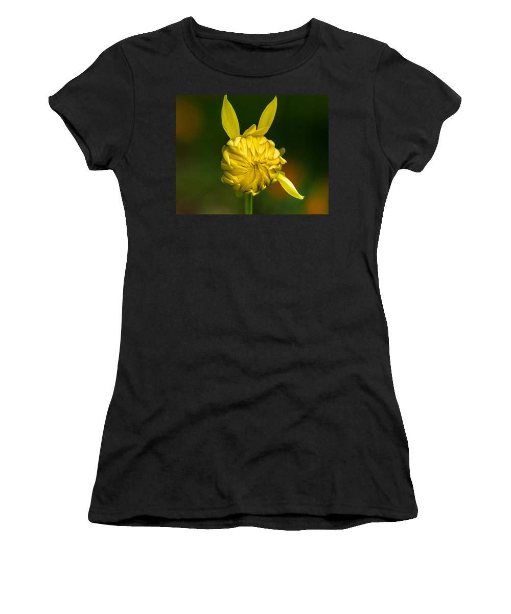Flower Women's T-Shirt (Athletic Fit) featuring the photograph Rabbit Flower by Greg Nyquist