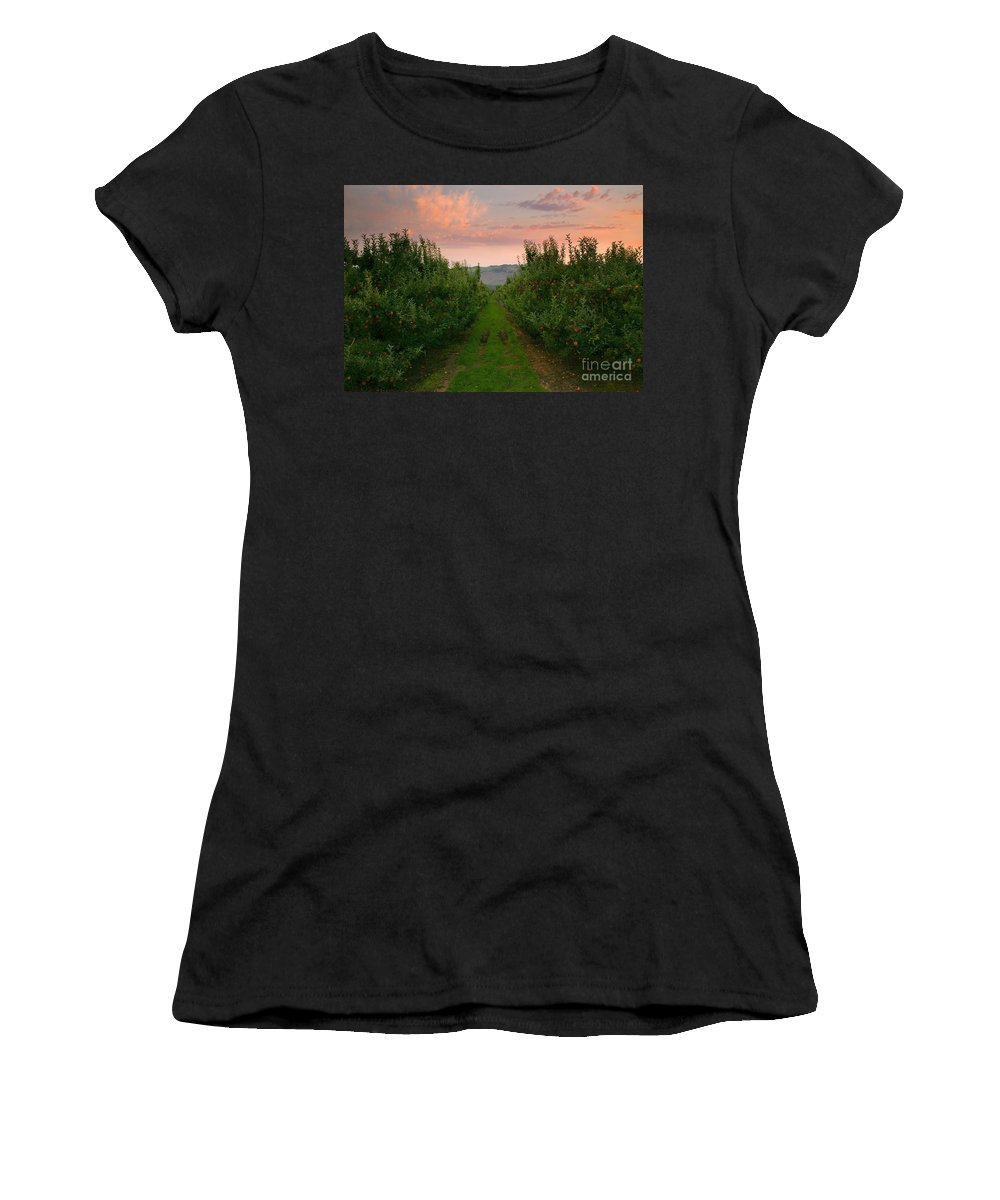 Apple Women's T-Shirt (Athletic Fit) featuring the photograph Red Apple Sunset by Mike Dawson