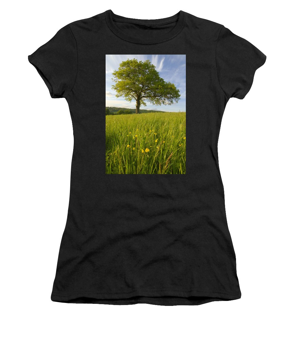 Yellow Women's T-Shirt (Athletic Fit) featuring the photograph Solitary Oak Tree And Wildflowers In by Axiom Photographic