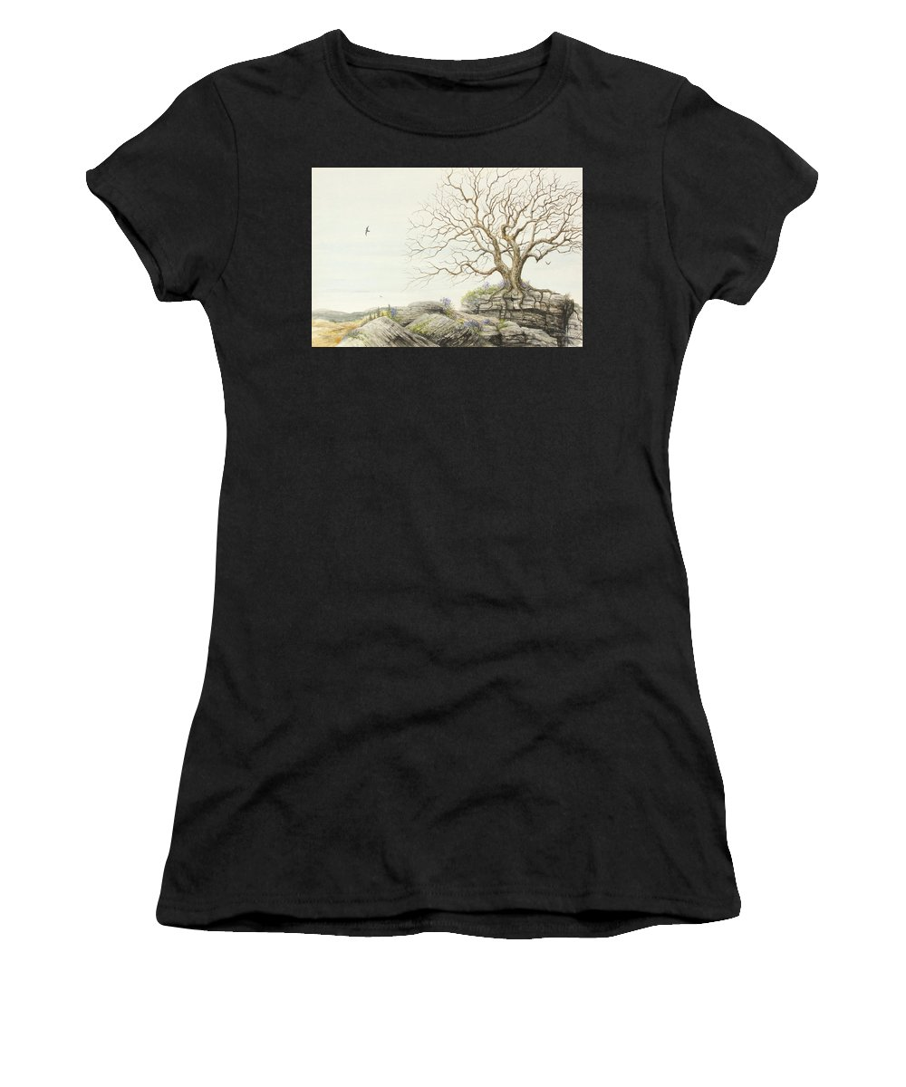 Sedimentary Rocks Women's T-Shirt featuring the painting Strata Exposed by Steve Mountz