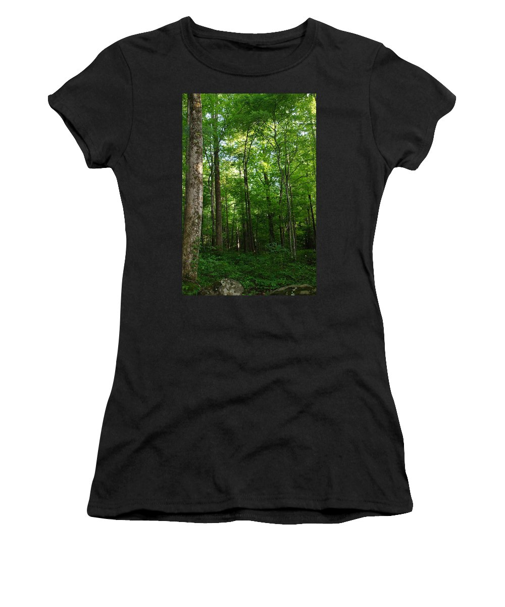 Forest Women's T-Shirt featuring the photograph Sunlit Forest by Megan Cohen