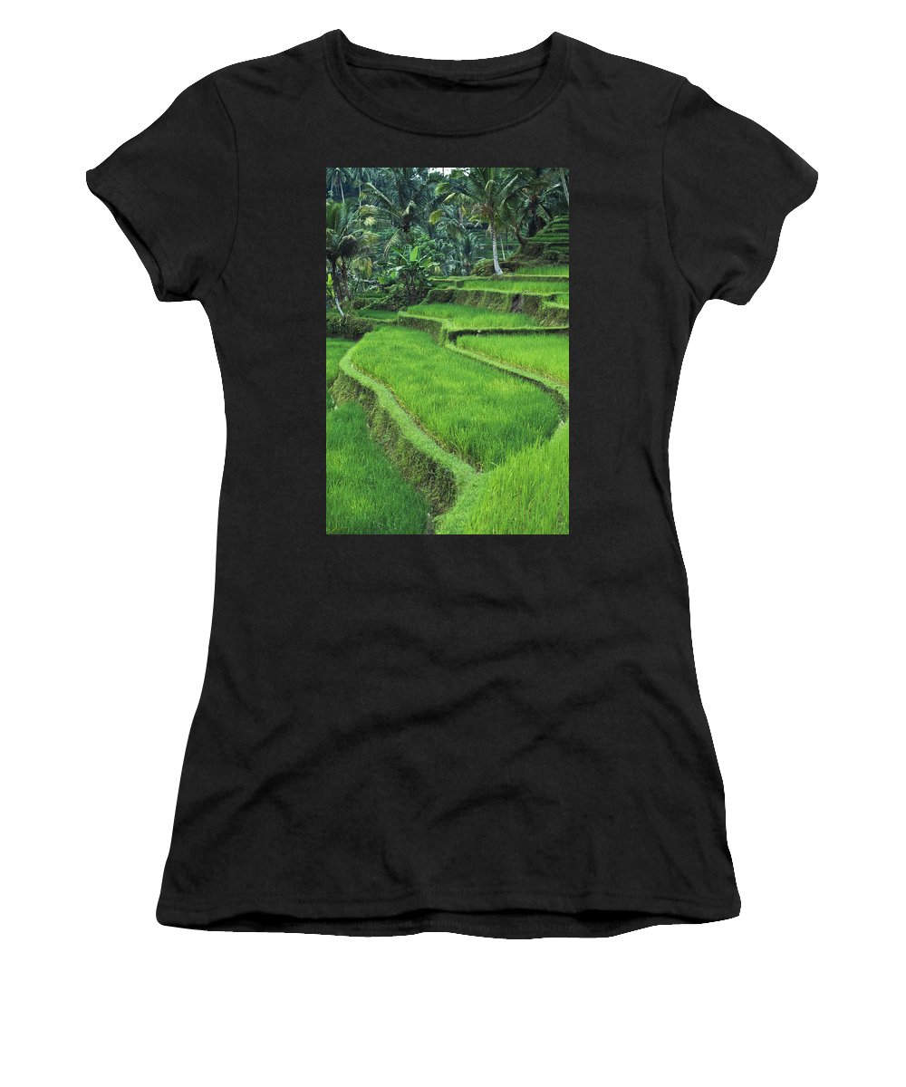 Agriculture Women's T-Shirt (Athletic Fit) featuring the photograph Terraced Fields Of Rice by Axiom Photographic