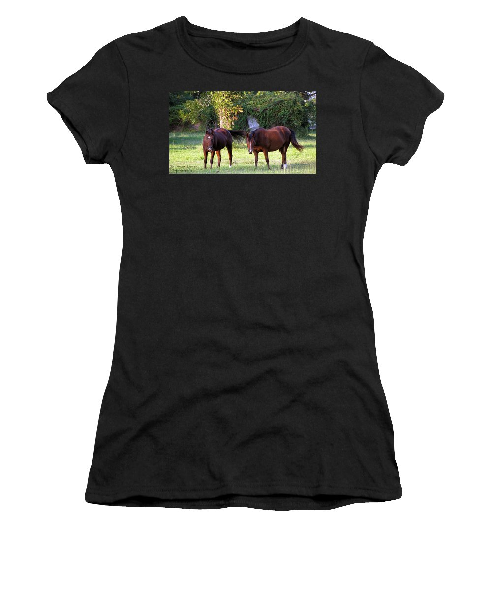 Horses Women's T-Shirt (Athletic Fit) featuring the photograph The Horses by Shannon Nolting
