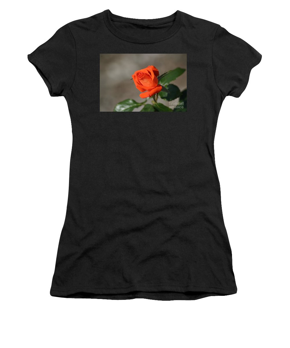Roses Women's T-Shirt (Athletic Fit) featuring the photograph Time For Some Tropicana by Living Color Photography Lorraine Lynch