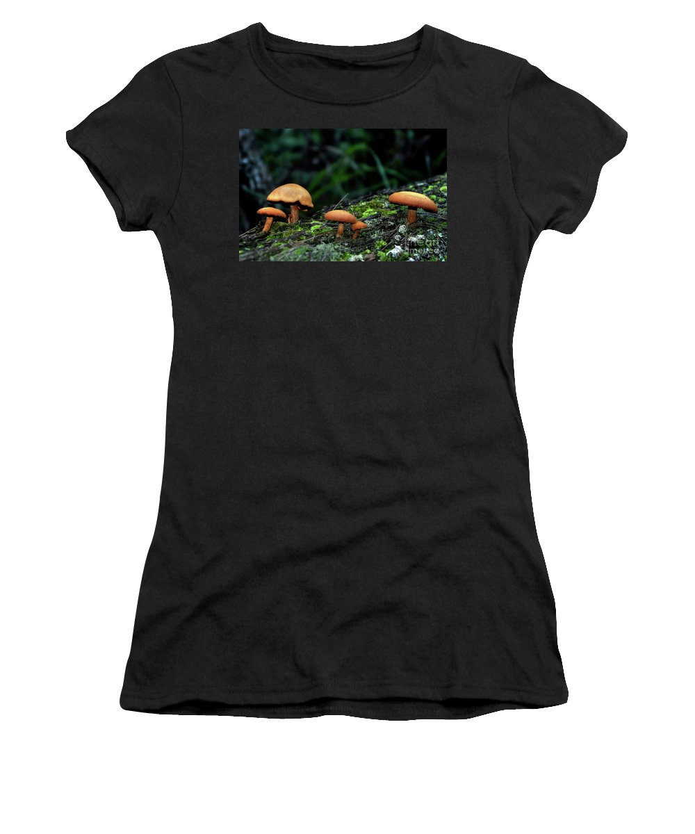 Photography Women's T-Shirt featuring the photograph Toadstool Village by Kaye Menner