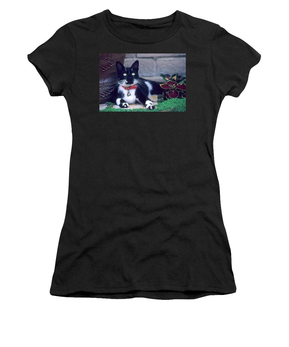 Mixed Breed Women's T-Shirt featuring the photograph Tuxedo Cat by Larry Allan